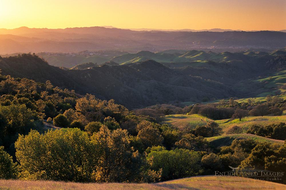 Sunset light on oak covered hillsides, Mount Diablo State Park ,Contra Costa County, CALIFORNIA