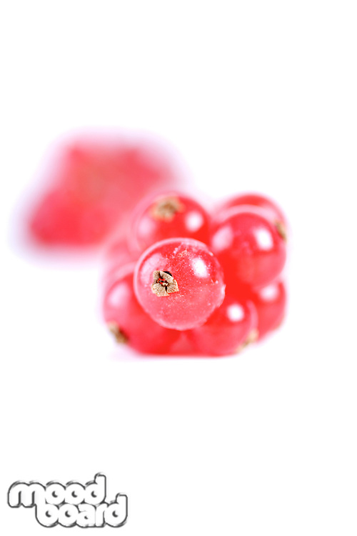Redcurrants on white background - close-up