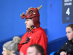 Wales Supporter During National Anthem<br /> Wales Women v South Africa Women<br /> Autumn International<br /> <br /> Photographer Mike Jones / Replay Images<br /> Cardiff Arms Park<br /> 10th November 2018<br /> <br /> World Copyright © 2018 Replay Images. All rights reserved. info@replayimages.co.uk - http://replayimages.co.uk
