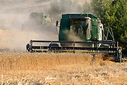 Israel, Kibbutz Ruhama, Negev Desert, combine harvester wheat Harvesting, June 2007