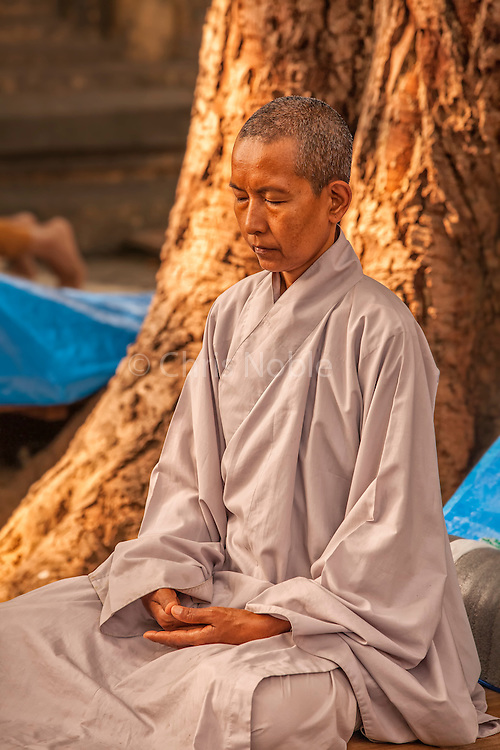 A Buddhist nun meditates at the Mahabodhi Temple, the site of the Buddha's enlightenment, in Bodhgaya India.