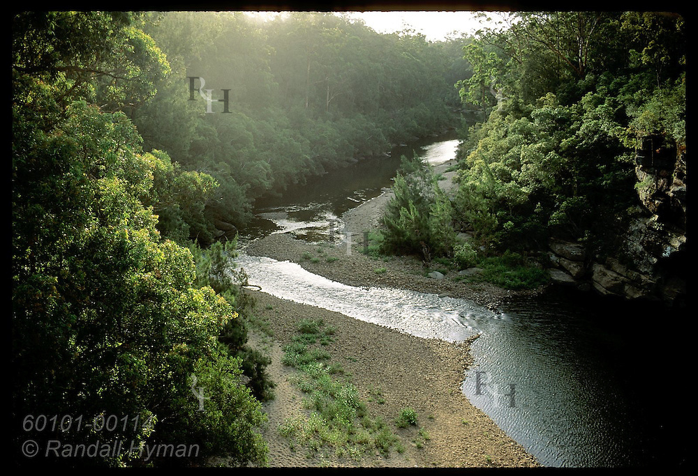 Small river flows through lush woods at sunset below the Hampden Bridge in Kangaroo Valley, NSW. Australia