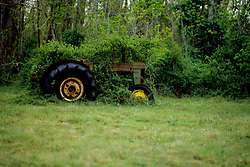 Stock photo of an old tractor overgrown with vines and other foliage in a remote field