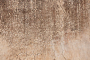 wall texture - Amber Fort - Jaipur