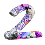The number Two Part of a set of letters, Numbers and symbols of 3D Alphabet made with colourful floral images on white background