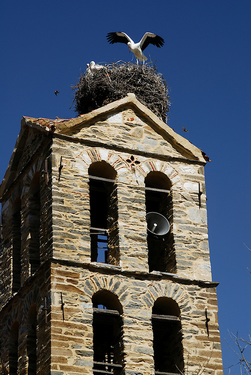 Birds at the top of Agios Nikolaos church at Giannota village, Elassona municipality, Larissa Prefecture, Thessaly, Greece.