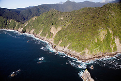 Southland District:  Coastal views north of Sutherland Sound, Fiordland National Park.