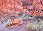 Luminous Light on Redrock Boulders and Grass in Glen Canyon Recreational Area, Utah