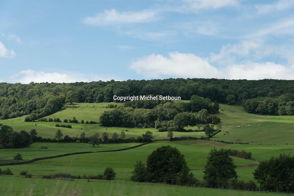 landscape of burgundy near auxerre, france<br />  / <br /> paysage de campagne en bourgogne pres d auxerre, France
