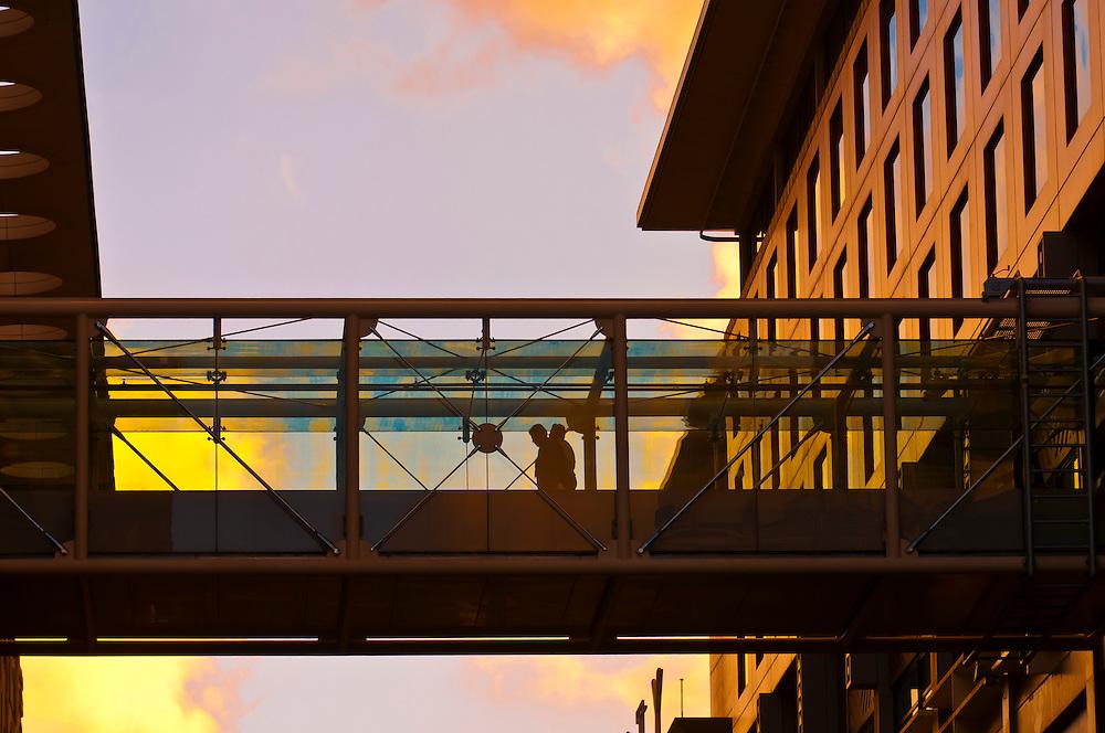 Sky City entertainment complex, Central Business District, Auckland harbor, New Zealand