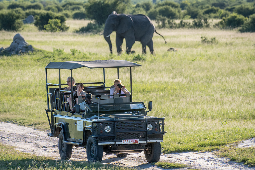 A caravan of tourists on a safari snap photos of the wildlife. Hwange National Park. Hwange, Zimbabwe.