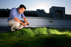 CHINA HONG KONG 24MAY10 - Sustainability officer Calvin Lee Kwan checks and waters a grass patch pilot insulation project on a roof at Hong Kong's Science and Technology University...jre/Photo by Jiri Rezac..© Jiri Rezac 2010