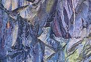 Birch tree (Betula papyrifera) and rock cliff , Whiteshell Provincial Park, Manitoba, Canada