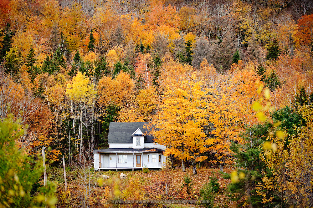 Cottage in the Fall. Cape Breton Island, Nova Scotia, Canada.