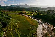 Lush green landscape of rolling hills and rice fields, Dien Bien Province, Vietnam, Southeast Asia