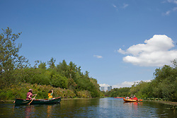 North America, United States, Washington, Bellevue, kayaking in Mercer Slough Nature Park.