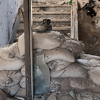 MOSTAR, BOSNIA AND HERZEGOVINA - JUNE 28:  A shoe is seen on old sandbags inside a derelict house damaged during  the 1993 war on June 28, 2013 in Mostar, Bosnia and Herzegovina. The Siege of Mostar reached its peak and more cruent time during 1993. Initially, it involved the Croatian Defence Council (HVO) and the 4th Corps of the ARBiH fighting against the Yugoslav People's Army (JNA) later Croats and Muslim Bosnian began to fight amongst each other, it ended with Bosnia and Herzegovina declaring independence from Yugoslavia.  (Photo by Marco Secchi/Getty Images)