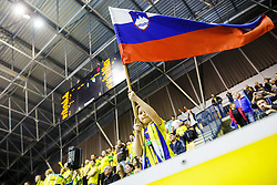 Slovenian national flag waved by young fan during handball match between RK Celje Pivovarna Lasko (SLO) and KS Viive Tauron Kielce (POL) in Group phase of EHF Men's Champions League 2016/17, on February 19, 2017 in Arena Zlatorog, Celje, Slovenia. Photo by Grega Valancic