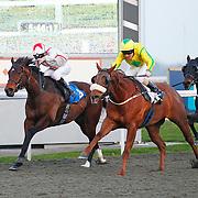 Novabridge and L P Keniry winning the 5.45 race