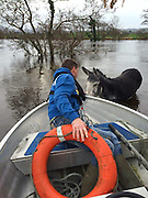 Smiling Donkey happy after being rescued from floods<br /> (low res as taken on mobile phone)<br /> <br /> On Sunday 6th December 2015, Suzanne Gibbons, founder of AHAR, received a call from the distraught owner of <br /> 'Mike the Donkey', stating that the donkey had escaped overnight when the storm had caused damage to the gate of his stable. His owner had found him that morning out in the field, and because the river had burst it's banks the donkey was stranded. After several calls to try and get help, the owner rang Suzanne at AHAR and she immediately called a code red on her page asking for people to come forward, and for a boat.<br /> <br /> Thanks to Mike at Killorglin Rowing Club, who came forward with the offer of help and a boat, the rescue could then get underway. Suzanne, Declan and Sue, all AHAR volunteers, and Mike, met at the site and began the rescue. The owner was also there throughout.<br /> <br /> They took the boat out to the donkey, and Declan worked hard to get the rope and buoyancy aid around the donkey, who was terrified and very tired by this time. The donkey was 'towed' to land and pulled out to safety.<br /> <br /> It was agreed with the owner that 'Mike', named after his rescuer, would go back to AHAR until the stable could be repaired and he could then be returned to his owner. A vet was called out immediately, who gave Mike antibiotics to prevent Pneumonia developing, and Mike was dried, put in a warm stable and given hot mash!<br /> ©Exclusivepix Media