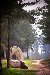 Artwork along The Route to Health walk on Cannock Chase, Staffordshire, England, United Kingdom.