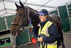 Our Vintage of Van Rijckevorsel Constantin (BEL)<br /> Departure of the horses from Liege Airport to Lexington<br /> Alltech FEI World Equestrian Games - Kentucky 2010<br /> © Dirk Caremans