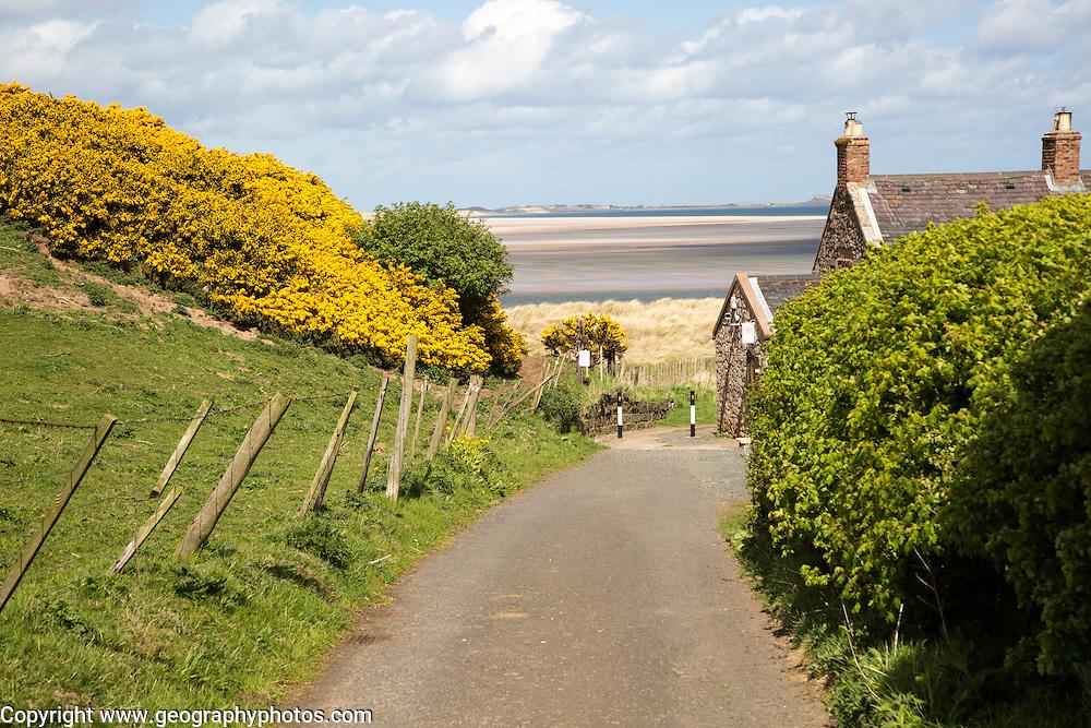 Coastal landscape at Budle Bay, Northumberland coast, England, UK