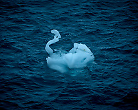 Ice Swan from the deck of the MS Fram.  New Years Eve 2014. Image taken with a Leica T camera and 18-56 mm lens (ISO 100, 56 mm, f/11, 1/125 sec). Raw image processed with Capture One Pro, Focus Magic, and Photoshop CC.