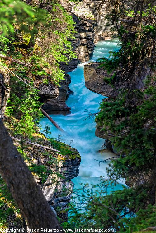 Water running near Athabasca Falls, Jasper National Park