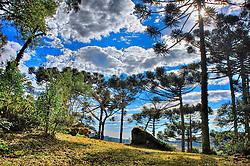 A cidade de Canela é conhecida internacionalmente por sua beleza, sua fauna e flora e pelos eventos que abriga no decorrer do ano. Lá encontra-se o Palácio das Hortênsias (casa de verão do Governador do Estado). FOTO: Jefferson Bernardes / Preview.com