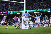 Argentinian joy at the final whistle during the Rugby World Cup Quarter Final match between Ireland and Argentina at Millennium Stadium, Cardiff, Wales on 18 October 2015. Photo by Shane Healey.