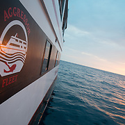 The Kona, Hawaii Aggressor Fleet liveaboard boat, Photo (c) William Drumm, 2013.