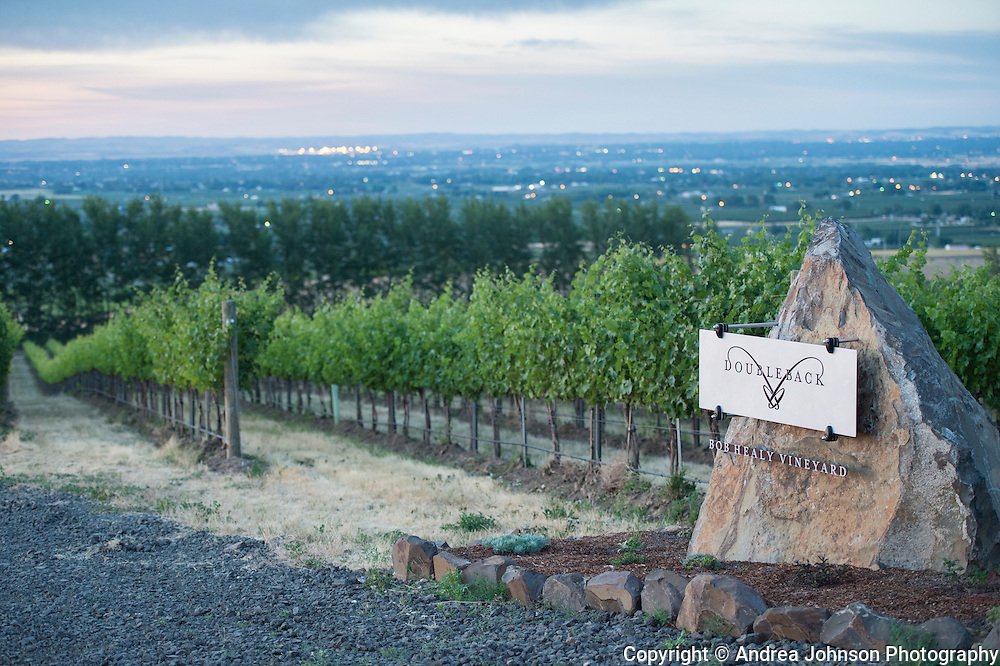 Drew Bledsoe's Doubleback winery summer solstice party at McQueen Vineyard overlooking Walla Walla, Washington