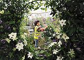 2011_05_19_Chelsea_Flower_SSI