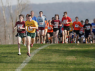 Warwick, N.Y. - Runners crest a hill during the Class AA boys' race at the New York State Public High School Athletic Association cross country championships at Sanfordville Elementary School on Nov. 11, 2006.<br />