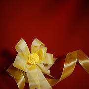 Golden bow and ribbon against a red background. Center of bow is key lighted.