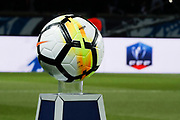 Ball illustration during the French Cup, quarter final football match between Paris Saint-Germain and Olympique de Marseille on February 28, 2018 at Parc des Princes Stadium in Paris, France - Photo Stephane Allaman / ProSportsImages / DPPI