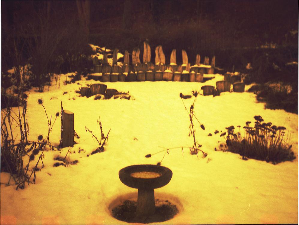 Ailie's Garden