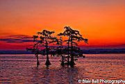 Reelfoot Sunrise from visitors center Reel Foot Lake