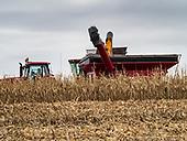 Fall Harvest in Iowa