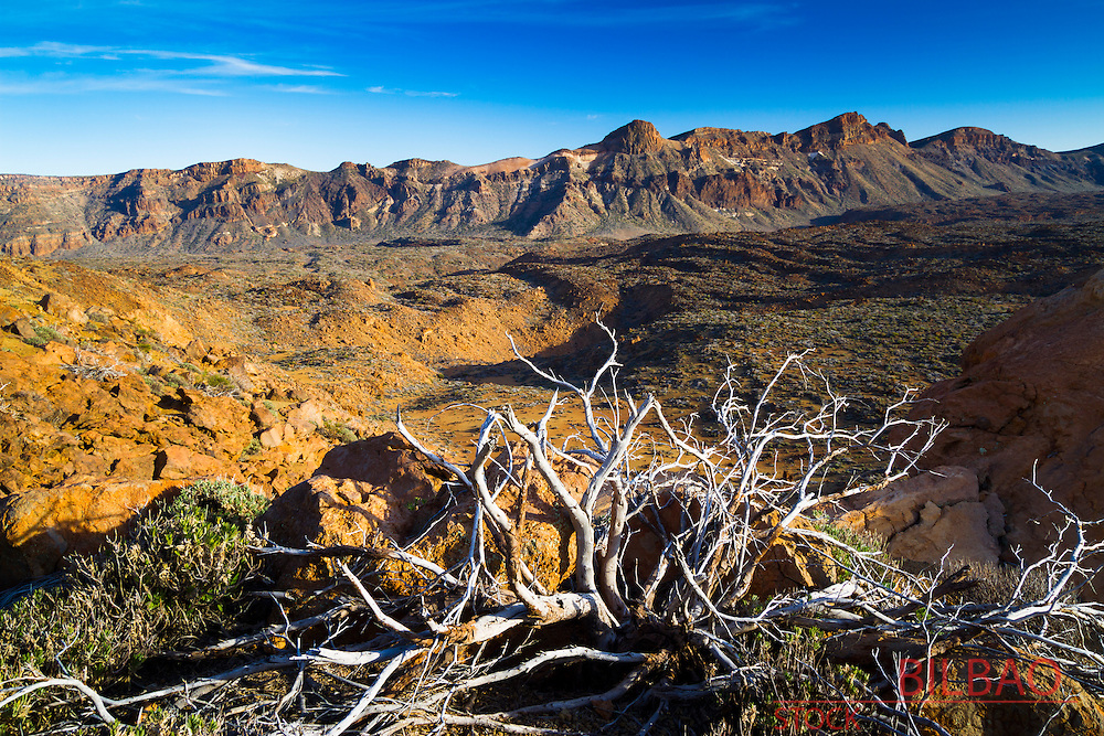 Crater. Teide National Park. Tenerife, Canary Islands, Atlantic Ocean, Spain