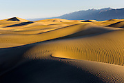 Mesquite Sand Dunes in Death Valley National Park in pristine condition the morning after a frequent wind storm.