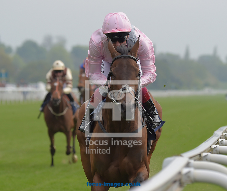 So Mi Dar ridden by Frankie Dettori (pink with grey sash) wins Tattersalls Musidora Stakes during the Dante Festival 2016 at York Racecourse, York.<br /> Picture by Martin Lynch/Focus Images Ltd 07501333150<br /> 11/05/2016