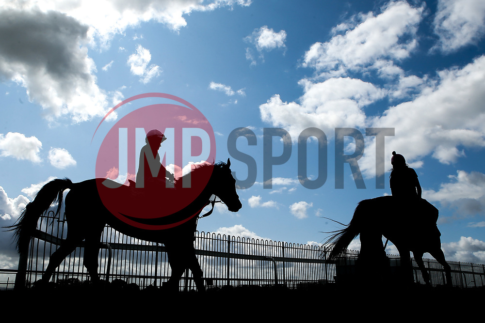 Horses at Bath Races - Mandatory by-line: Robbie Stephenson/JMP - 04/09/2019 - PR - Bath Racecourse - Bath, England - Bath Races
