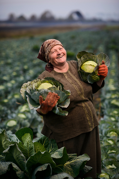 Farmers near Lviv, Ukraine grow potatoes  and cabbage, two of the staple crops of small farmers in this rich farming country near the Black Sea. Farmer is Olexandra Salo.