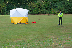 ©Licensed to London News Pictures 25/07/2020     <br /> Chislehurst, UK. A forensic tent and police cordon is still in place this morning.  A male pedestrian has been involved in a collision with a van in Chislehurst, South East London, The van did not stop. The London air ambulance was called but the man sadly died at the scene a police cordon is in place and at this time it is believed the police are linking this incident to the double stabbing at the Gordon Arms pub in Chislehurst. Photo credit: Grant Falvey/LNP