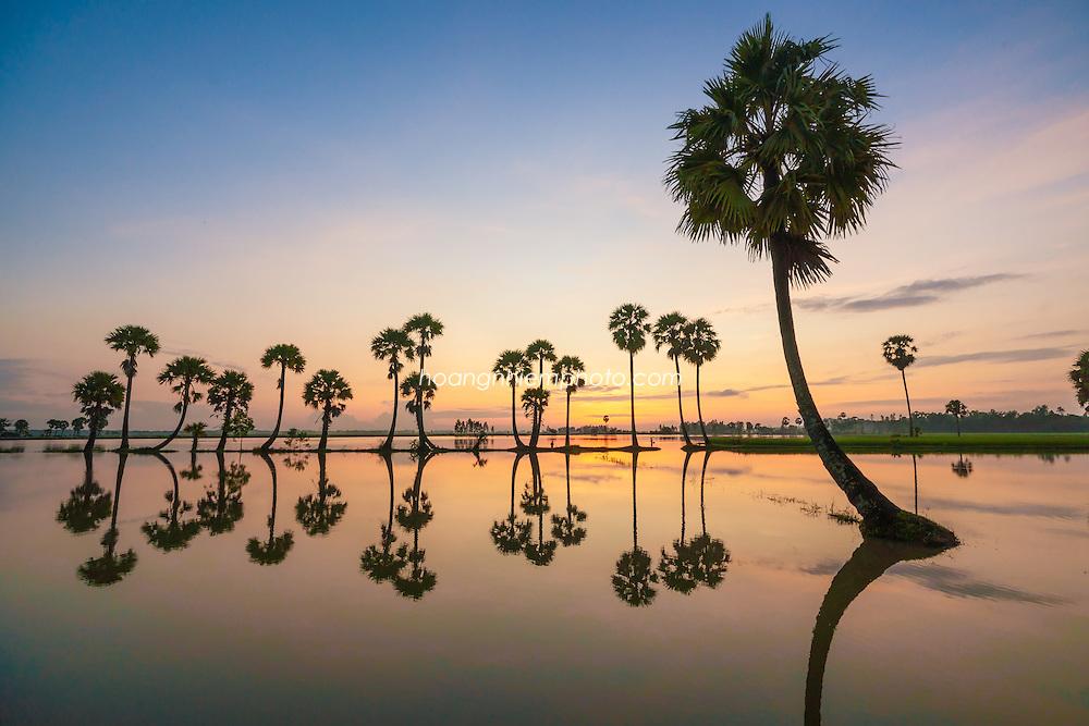 Vietnam Images-Phong cảnh miền Tây-Châu Đốc