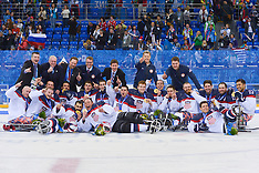 March 15th 2014 - Ice Sledge Hockey Finals