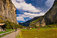 Walking path, Lauterbrunnen Valley, Canton Bern, Switzerland