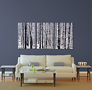 Room Display - Living Room<br />